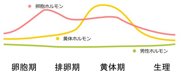 seirisyuki